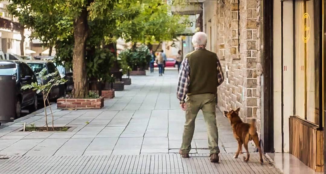 A férfi és a kutya