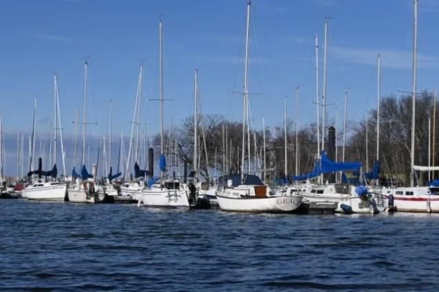 Boats at the Washington Marina in Arlington
