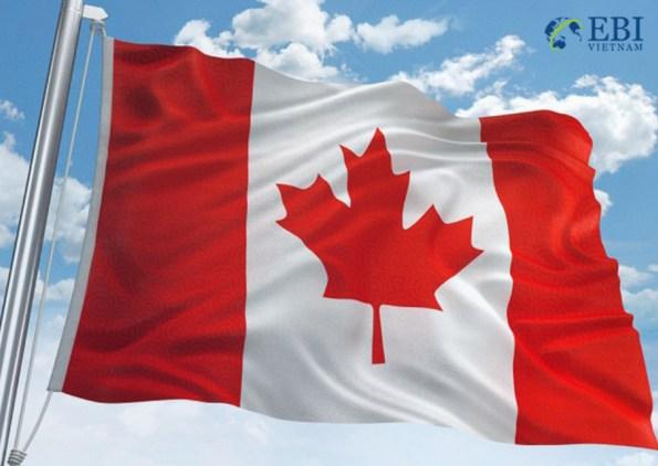 hồ sơ du học Canada nên được chuẩn bị sớm