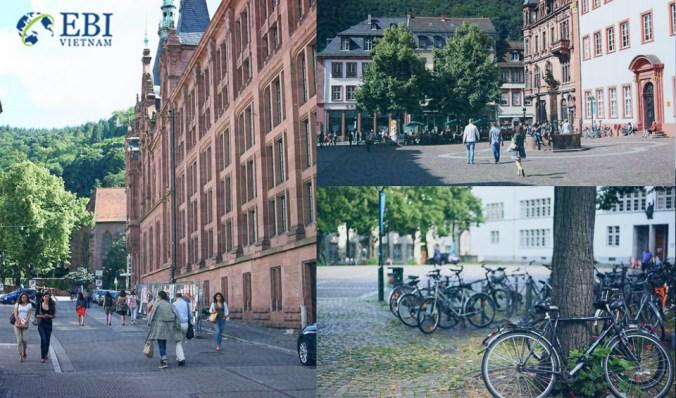 Khuôn viên tại trường Đại học Heidelberg