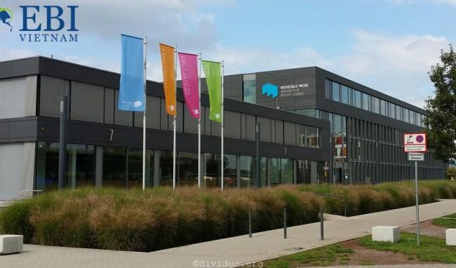 Đại học ứng dụng Mainz – Hochschule Mainz
