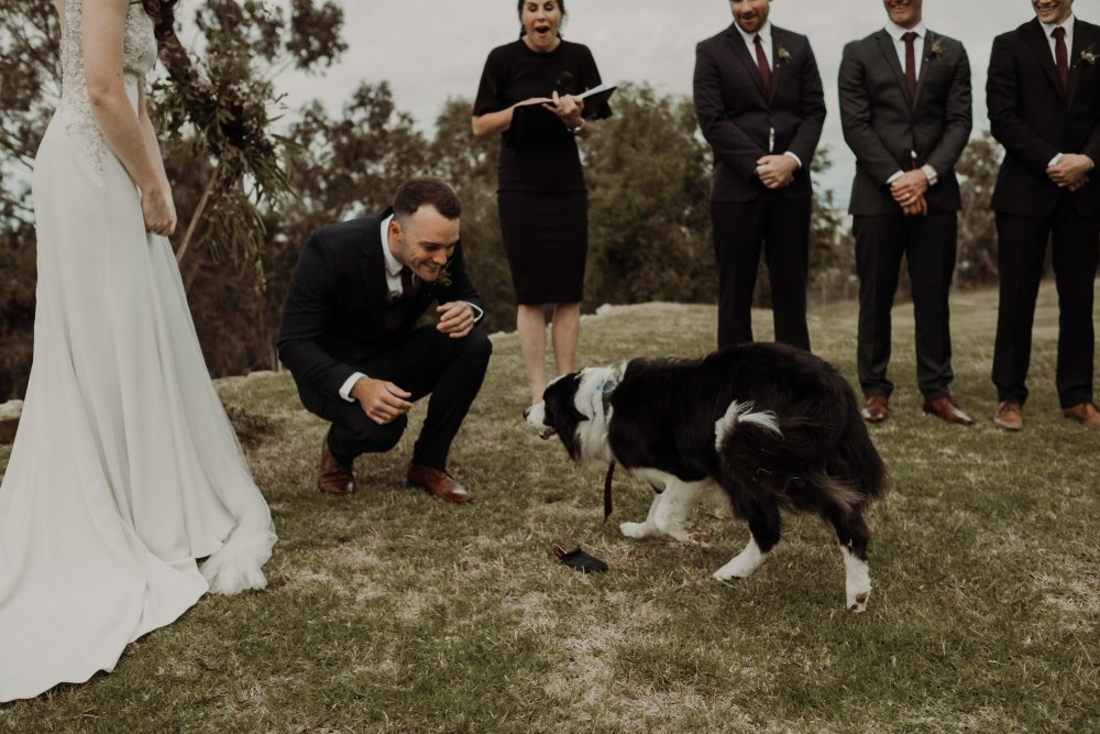 Pip + Mitch   Ebony Blush Photography   Perth Wedding Photographer   Perth Wedding Photos   Street Food Wedding   Fremantle Wedding Photos34
