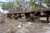 bush bridge 2