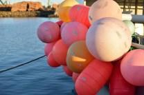 bright buoys