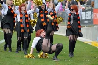 Rockdogs cheerleaders ooh la la
