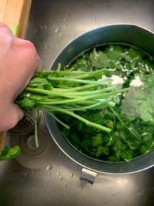 Clean herbs in vinegar water