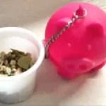 Tovolo Piggy Tea Ball with herbs