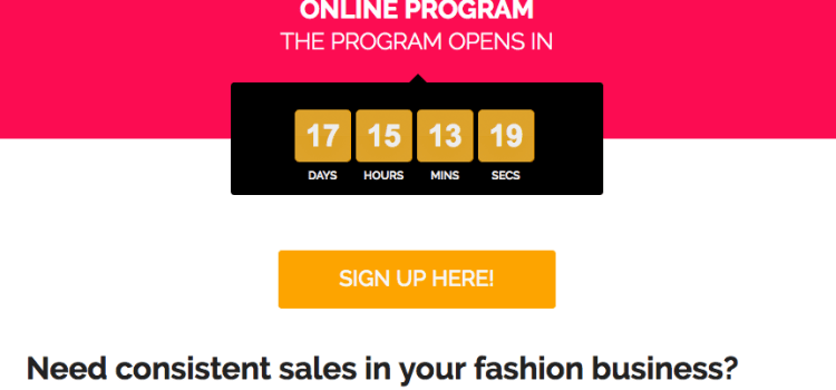 Fashion4Profit Online program