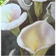 Calla Lilies by Barbara Haviland