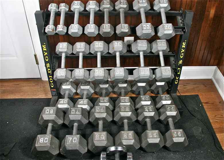 gold s gym dumbbell rack and free weights