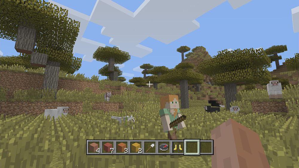 Minecraft Intruding New Pack Of 4K Graphics To Users - ebuddynews