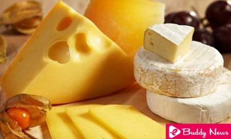 Top 7 Types Of Healthy Cheeses ebuddynews