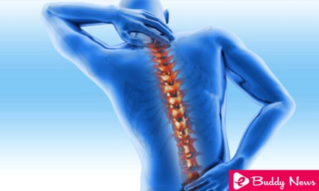What Is Osteoporosis And Its Causes, Symptoms And Treatment ebuddynews