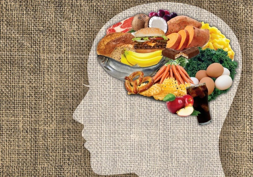 The Success Of A Diet Depends On The Brain Structure 1 - ebuddynews