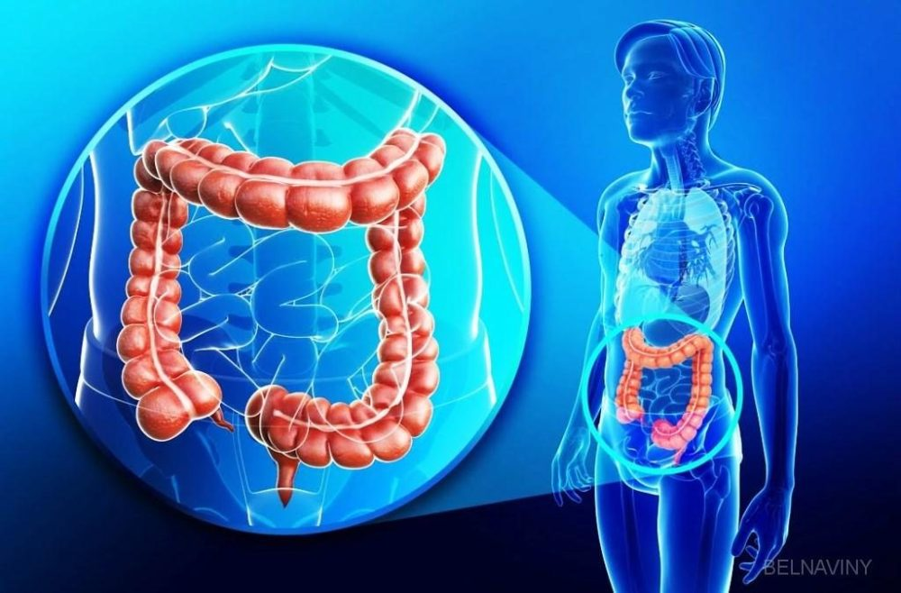 Researchers Find A Key Piece to Stop Colon and Rectal Cancer - ebuddynews
