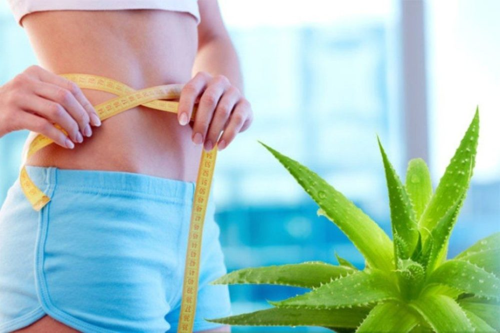 5 Amazing Benefits Of Aloe Vera For Health - ebuddynews