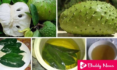 Amazing Benefits of SourSop For Weight Loss - eBuddynews