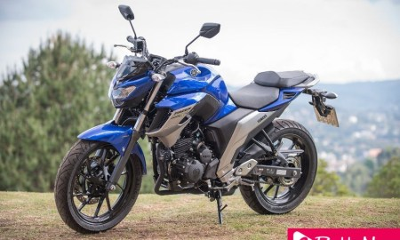 The All New Yamaha Fazer 250 ABS 2020 Adds New Color - eBuddynews