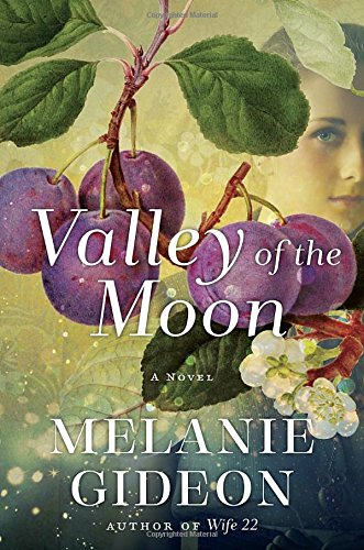Valley of the Moon: A Novel Melanie Gideon