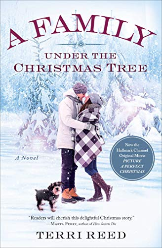 A Family Under the Christmas Tree: A Novel Terri Reed