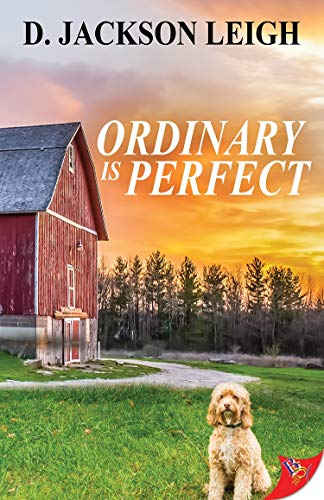 Ordinary is Perfect D. Jackson Leigh