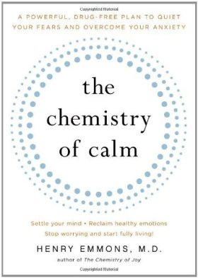 The Chemistry of Calm: A Powerful, Drug-Free Plan to Quiet Your Fears and Overcome Your Anxiety (English Edition)