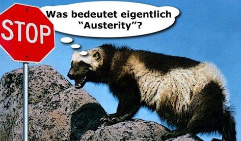 Austerity richtig