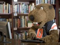 Benny the Beaver, Oregon State University's mascot, sits at a computer.