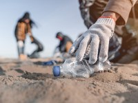 A person's gloved hand reaches toward a discarded plastic water bottle on the ocean sand, with other people in the background also involved in the cleanup effort. Environmental and natural resource option in Oregon State's sociology bachelor's degree program.