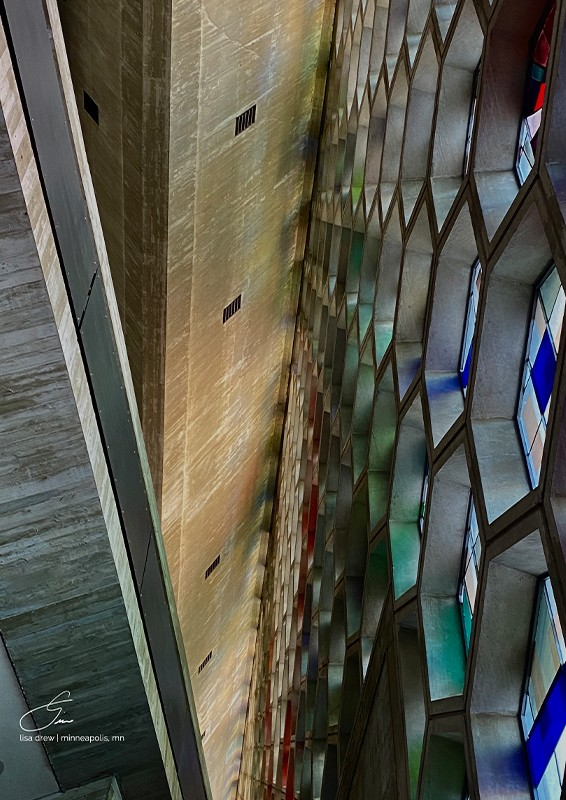 Honeycomb - Lisa Drew Photos Minneapolis