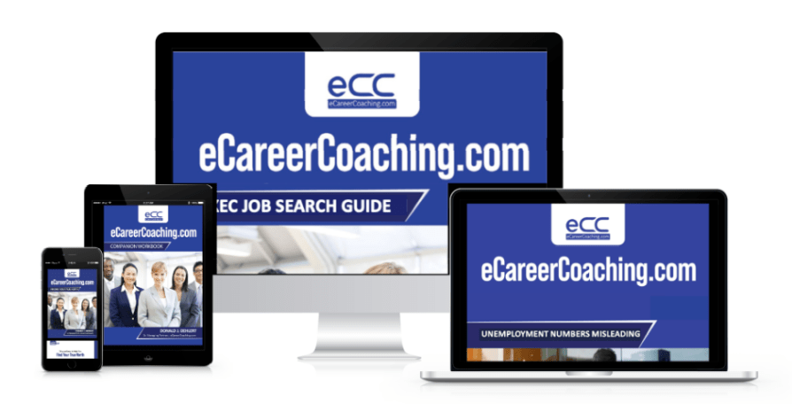 The eCareerCoaching.com eBook (PDF) Product Set