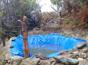 After successful completion of Plastic Pond