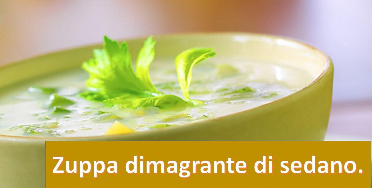 Dimagrire in fretta con la zuppa di sedano