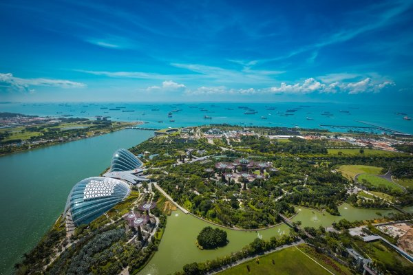 Gardens by the bay Singapore (2)
