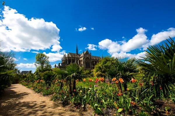 Collector Earl's Gardens arundel castle (2)