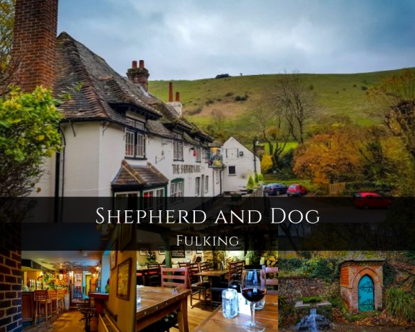 Shepherd and dog Fulking