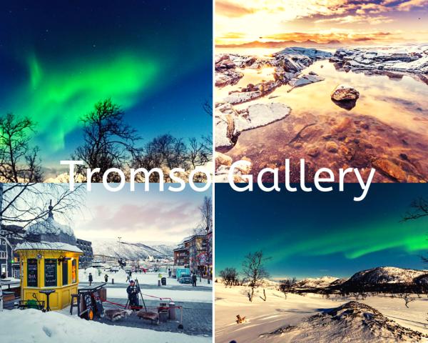 Tromso Gallery
