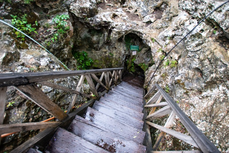 stairs down to Cenote Choo-Ha small
