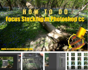 How to do Focus Stacking in Photoshop CC