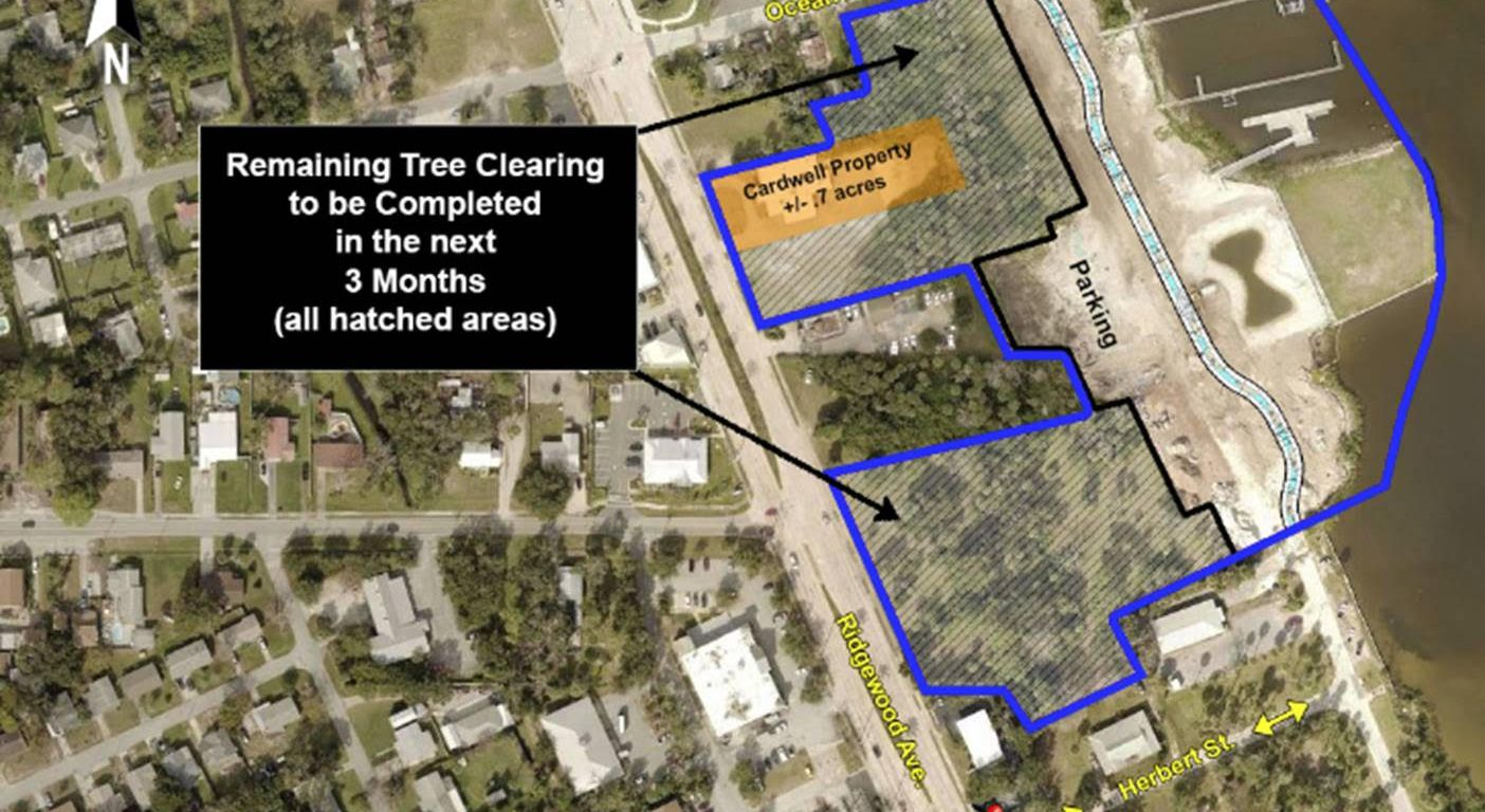 city of port orange clearing trees on riverwalk property