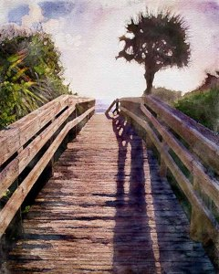 Ocean Walk by Dave Coleman