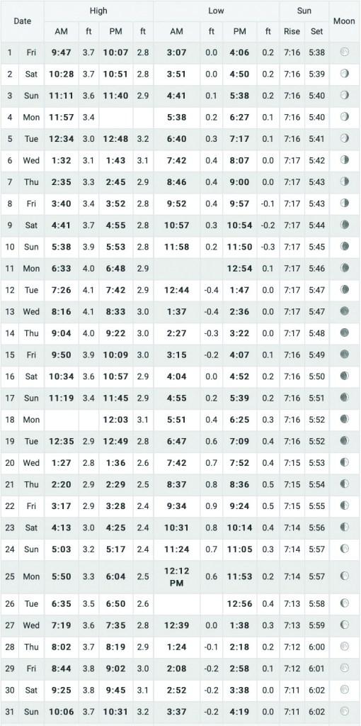 JAN 2021 Tide Chart