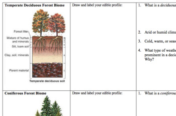 Edible Soil Horizons Compare Climates Biomes Ap Environmental Science Lab