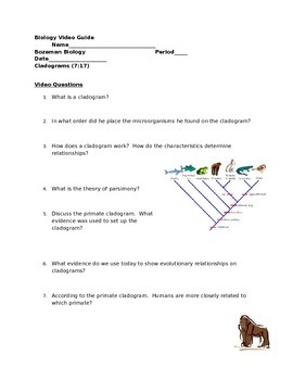Biology Video Guide Bozeman Biology Cladograms By Kimmie S