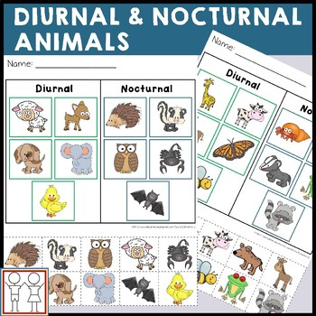 Diurnal And Nocturnal Animals Worksheets By Catherine S