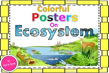 Ecosystem Colorful Posters For Classroom Tpt