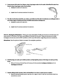 Evolution Activity Evidence For Evolution Identification Analysis With Key