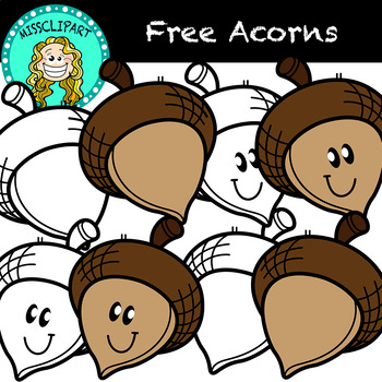Free Acorn Clipart Color And B W Missclipart By Missclipart Tpt