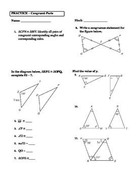 Cpctc Worksheet
