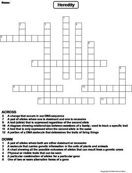 Heredity Worksheet Crossword Puzzle By Science Spot